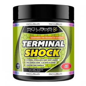 Terminal Shock 275 gr-...